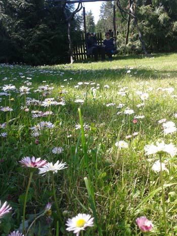 kwiatymydwie