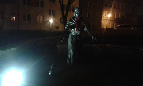 9 Kaczarka w nocy