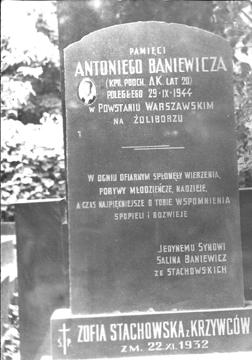 Grob_Baniewiczow_na_Powazkach_w_Warszawie_fot_lata_60te