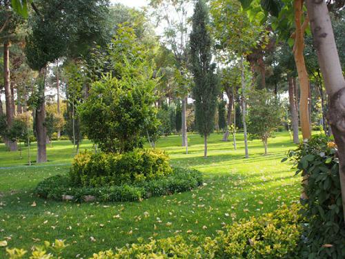 Isfahan-planty