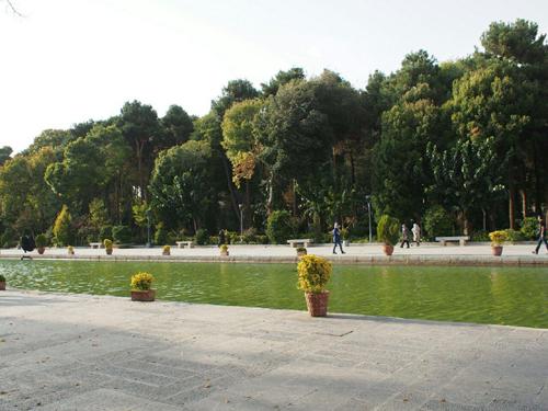 Isfahan-planty2