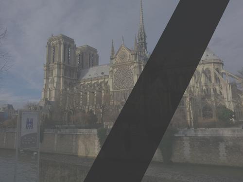 Paryzwzalobie