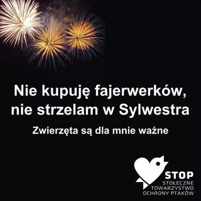 Sylwester3