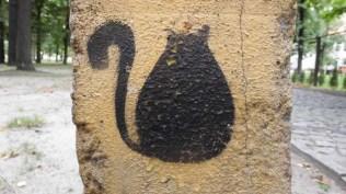 kotkatowice