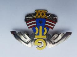 Odznaka OddziaŠów Wartowniczych